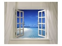 Open_window